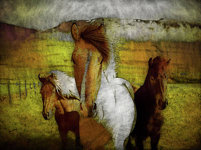 Poster featuring the photograph Plateau Ponies by Bellesouth Studio