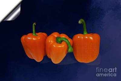 Playful Peppers Poster