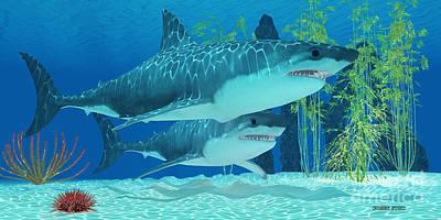 Pleistocene Megalodon Shark Poster