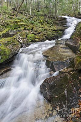 Plimpton Falls - White Mountains New Hampshire Usa  Poster by Erin Paul Donovan