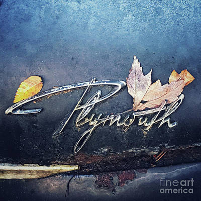Poster featuring the photograph Plymouth by Terry Rowe