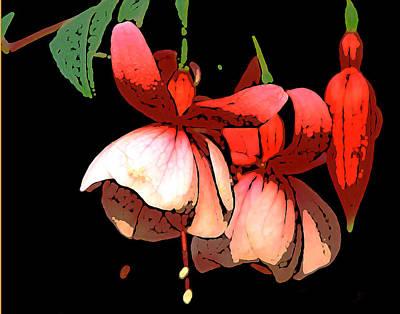Pod Flower B Poster