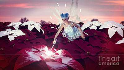 Poinsettia Snow Fairy Poster by Methune Hively