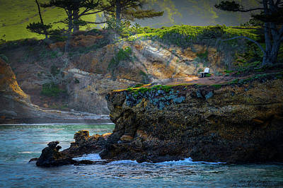 Point Lobos, Calif. A Missed Opportunity Poster by Wendy Seagren