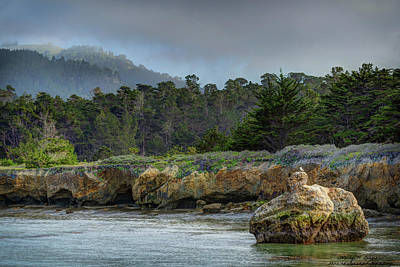 Point Lobos, Calif. Whaler's Cove Poster by Wendy Seagren