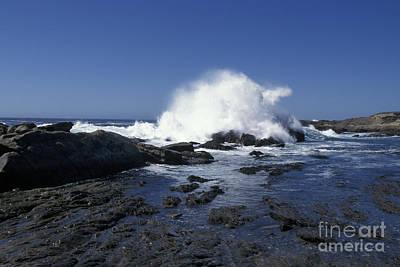 Point Lobos Seascape 2 Poster