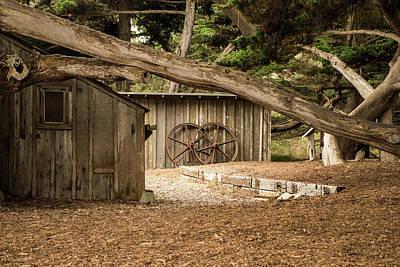 Point Lobos Whaler's Cabin Poster by Linda Baker