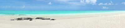 Pointe D'esny Beach, Mauritius. Panorama Poster