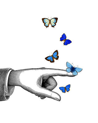 Pointing Finger With Blue Butterflies Poster