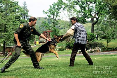 Police Dog Training Poster
