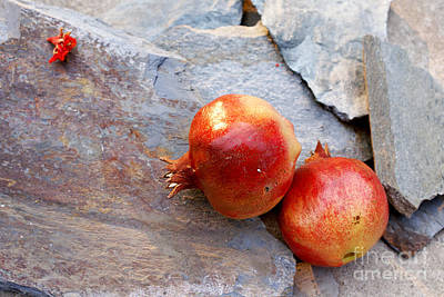 Poster featuring the photograph Pomegranates On Stone by Cindy Garber Iverson