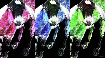 Pop Art Goats Trio - Sharon Cummings Poster by Sharon Cummings