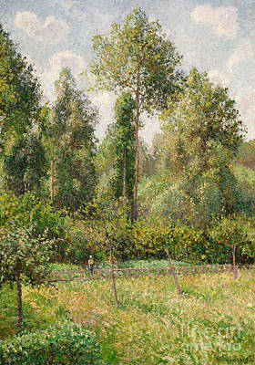 Poplars, Eragny, 1895 Poster by Camille Pissarro
