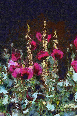 Poppies And Verbascum Poster by Shirley Stalter