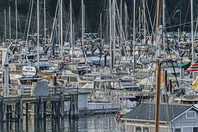 Port Of Friday Harbor Marina Poster