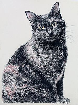 Portrait Of A Good Looking Cat Poster
