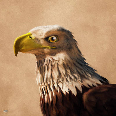 Poster featuring the digital art Portrait Of An Eagle by Daniel Eskridge