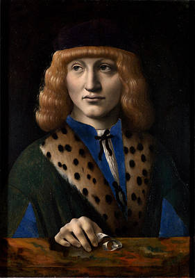 Portrait Of Francesco Di Bartolomeo Archinto At The Age Of 20 Aka The Archinto Portrait Poster by Marco d'Oggiono