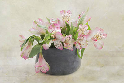 Pot Of Pink Alstroemeria Poster