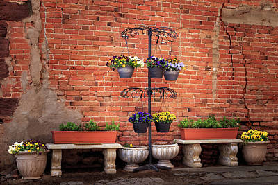 Poster featuring the photograph Potted Plants And A Brick Wall by James Eddy