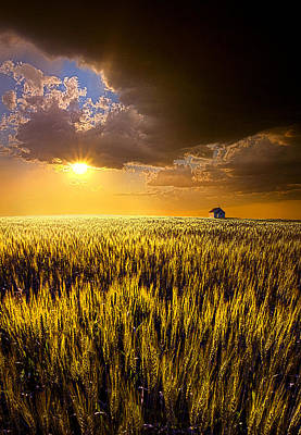 Praire Land Poster by Phil Koch