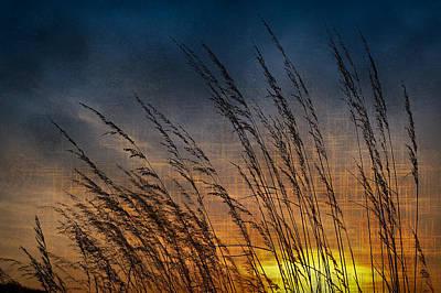 Prairie Grass Sunset Patterns Poster