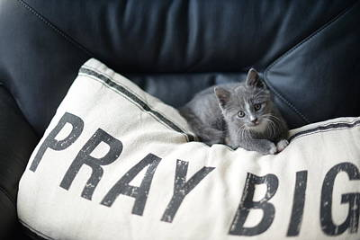 Poster featuring the photograph Pray Big by Linda Mishler