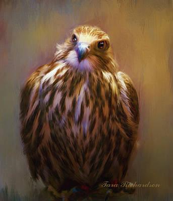 Pretty Bird Poster by Tara Lee Richardson