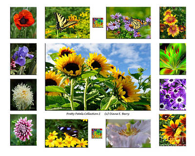 Poster featuring the photograph Pretty Petals Collection I by Diane E Berry