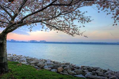Pretty Potomac Poster