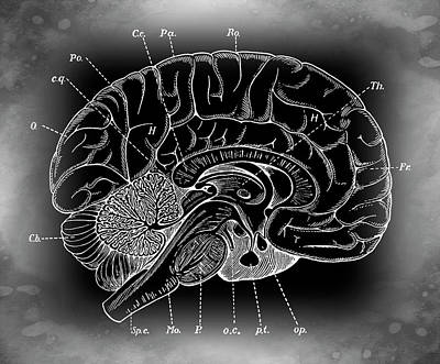 Primordial Mysterious Brain Poster