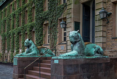 Princeton University Nassau Hall Tigers Poster by Susan Candelario