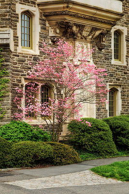 Princeton University Patton Hall  Poster by Susan Candelario