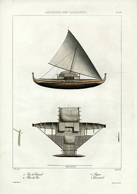 Proa Of Satawal Archipel Des Carolines Poster by Dumont d Urville