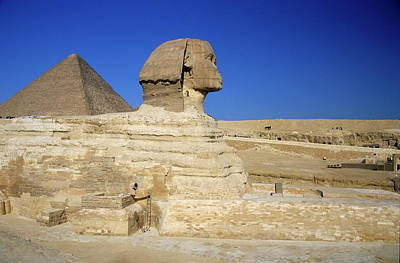 Profile Of The Great Sphinx With The Great Pyramid Of Giza In The Background Poster