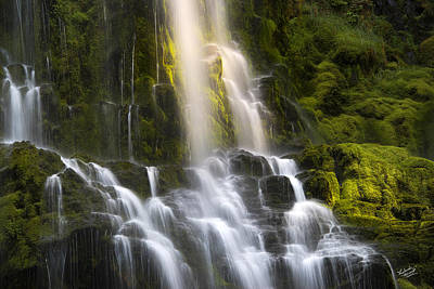 Proxy Falls In Forest Light Poster by Leland D Howard