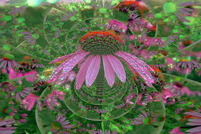 Psychedelic Cone Flowers Poster by Kay Novy