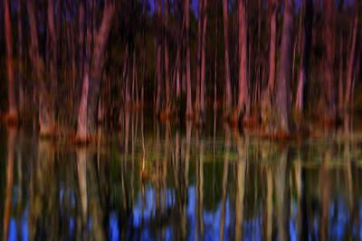 Psychedelic Swamp Trees Poster by Susanne Van Hulst