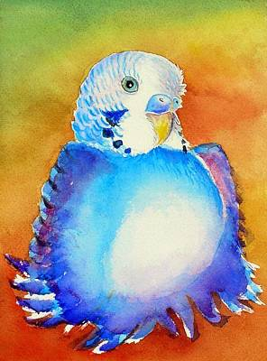 Poster featuring the painting Pudgy Budgie by Patricia Piffath