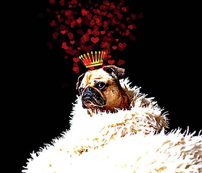 Pug Love Pug Dog With A Crown Of Hearts, Puppy Love Art Poster