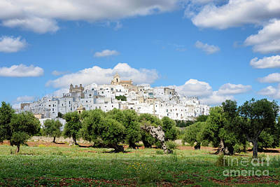 Puglia White City Ostuni With Olive Trees Poster