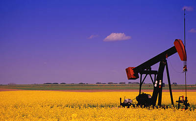 Pumpjack In A Canola Field Poster by Carson Ganci