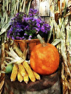 Pumpkin Corn And Asters Poster by Susan Savad