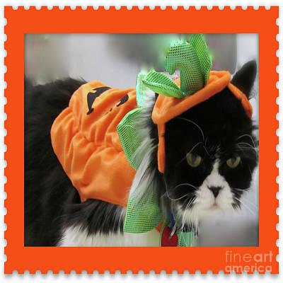 Pumpkin Humphries Poster