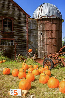Poster featuring the photograph Pumpkins For Sale Old New England Farm by Edward Fielding
