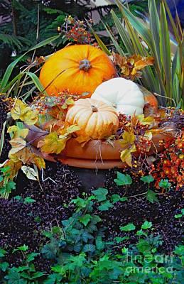 Pumpkins In The Garden Poster