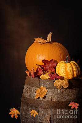 Pumpkins On Barrel Poster by Amanda Elwell