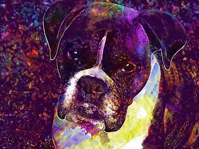 Puppy Boxer Dog Pet Animal Cute  Poster