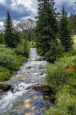 Pure Rocky Mtn. Spring Water Poster