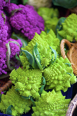 Purple And Romanesco Cauliflower Poster